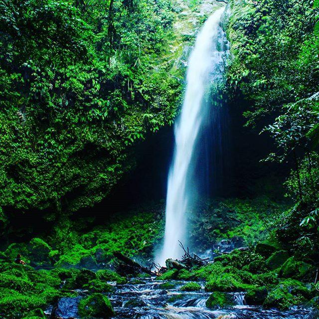 Konservasi Alam Sicikecike